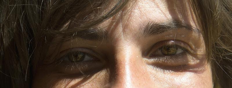 Gli occhi del bosco  di utente cancellato