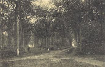 Photo: 1908 Vijfsprong in het Liesbosch