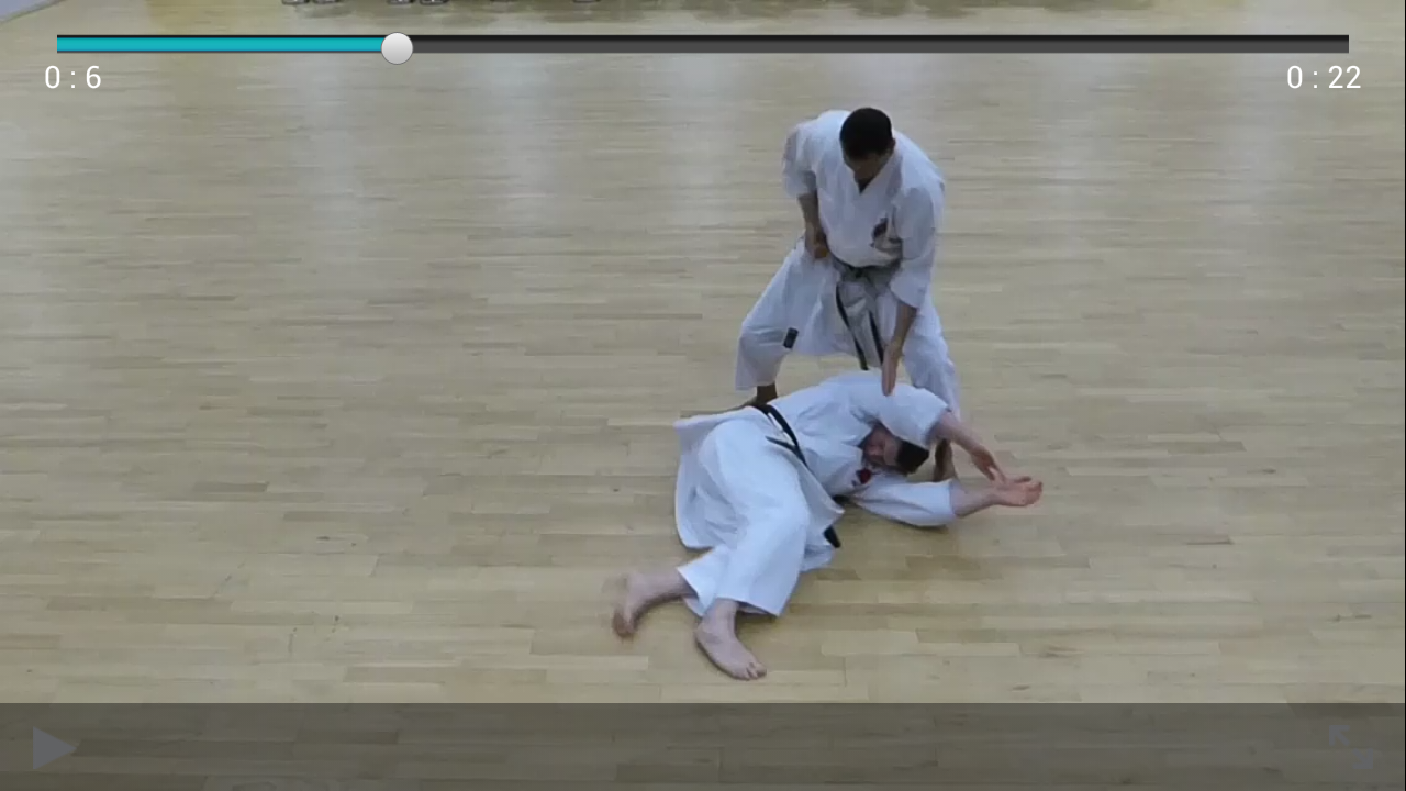 Beginner to Black Belt- screenshot
