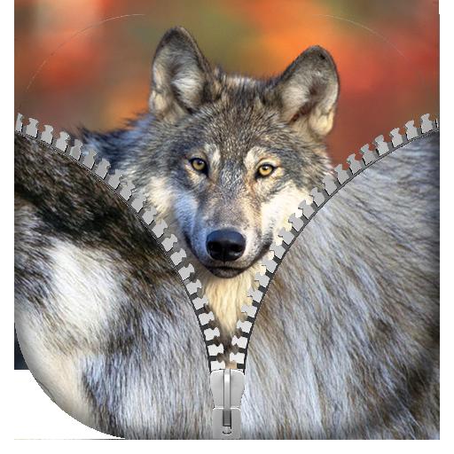 狼 ジッパー画面ロック 個人化 App LOGO-APP試玩