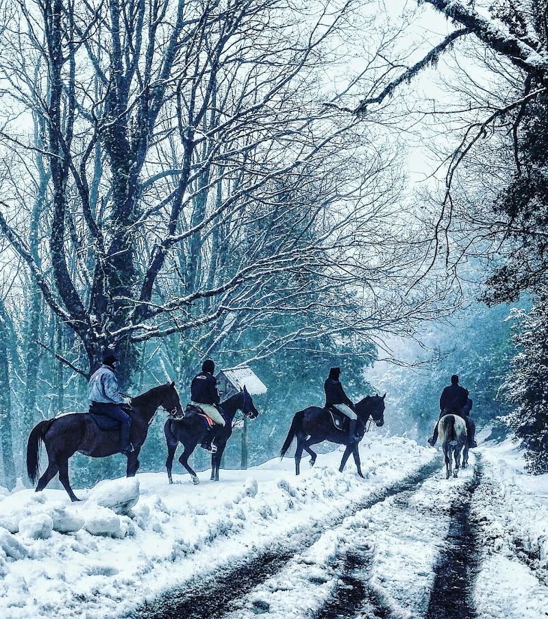 A cavallo sulla neve di Giovanni Coste