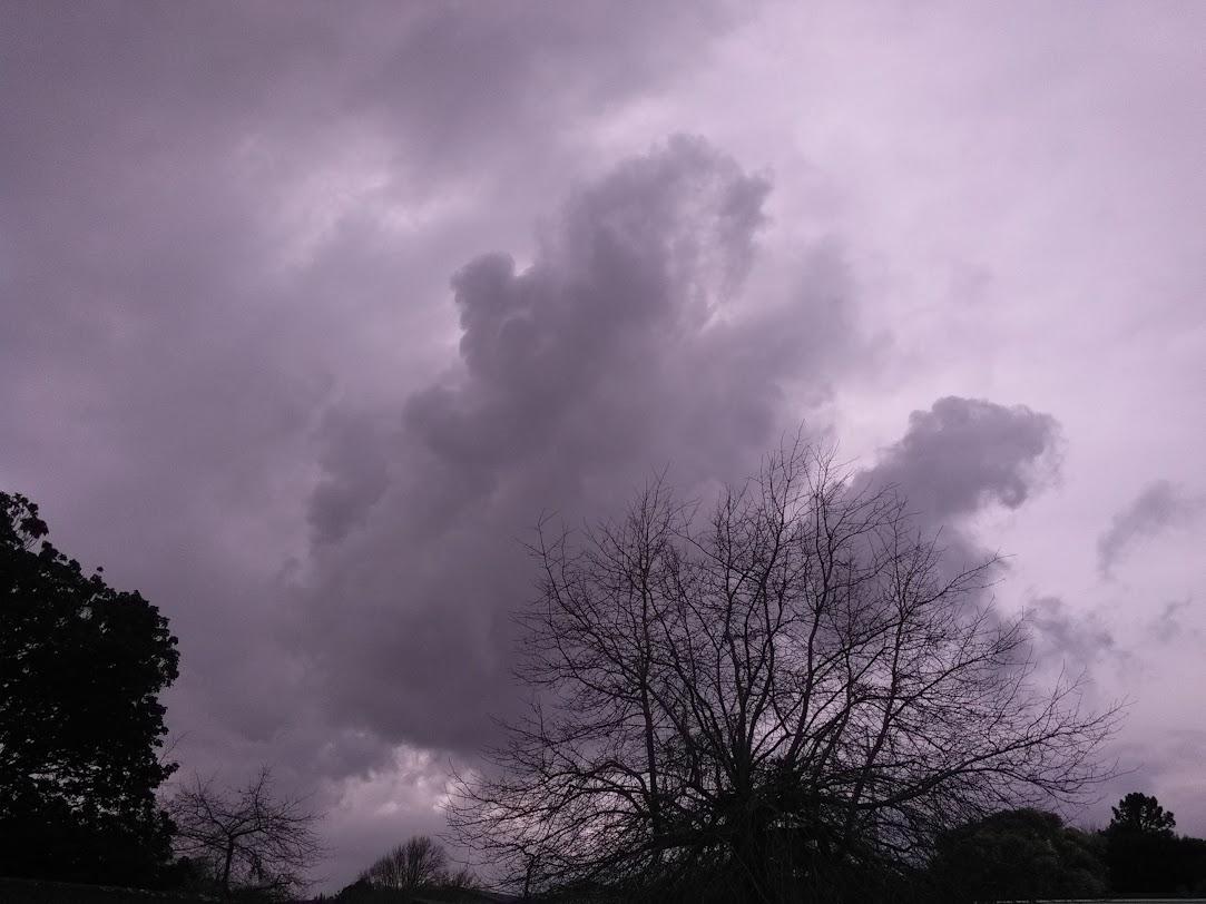 今にも一雨来そうな雲が勢揃い