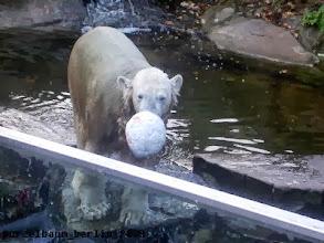 Photo: Auf zur naechsten Runde Ballspiel :-)