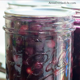 Blueberry Pie Filling.