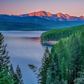 Lazy Tree by Tomas Rupp - Landscapes Mountains & Hills ( mountains, nature, sunset, forest, lake, landscape,  )