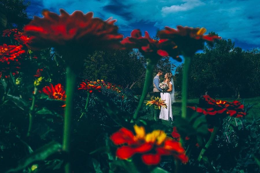 Wedding photographer Marcin Karpowicz (bdfkphotography). Photo of 14.09.2016