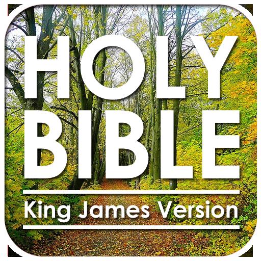 书籍の聖書:欽定訳 LOGO-記事Game