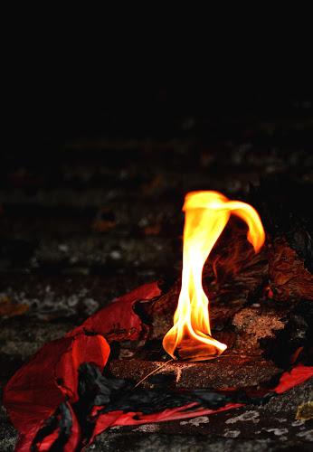 #Ardere di Sasa23282