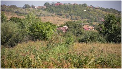 Photo: Str. Agriculturii - Vedere din Zona Obor - de pe Str. A.I.Cuza - 2017.09.01