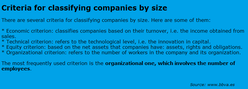 criteria for classifying companies by size