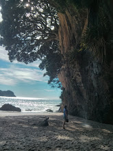 Photo: The other end of the beach at Cathedral Cove.   Go for a swim in that beautiful water and wash off the salt with a waterfall.