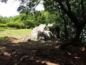 大岩の近くは草地
