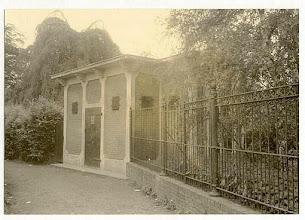 Photo: 1960 De Tuintjes