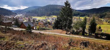 terrain à Colroy-la-Roche (67)