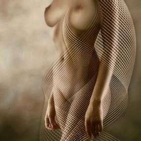 BODY CURVES by Carmen Velcic - Digital Art People ( body, sexy, nude, woman, she, lady, digital )