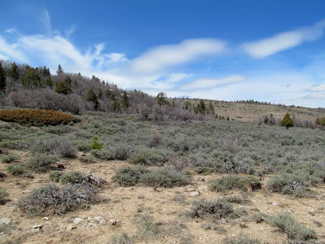 Flat stretch leading to Diamanti Canyon