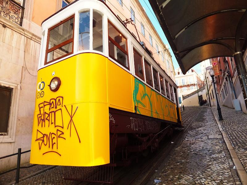 Saliscendi sui colli di Lisbona  di annabus58