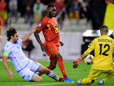 De 30-jarige spits denkt dat Marouane Fellaini nog steeds een meerwaarde kan zijn voor de Rode Duivels