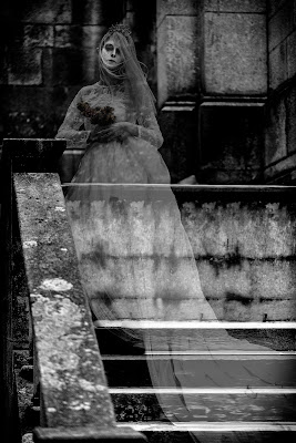 La sposa cadavere di NinoZx21