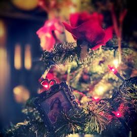 Silent Night by Betsy Bone Kirichenko - Public Holidays Christmas