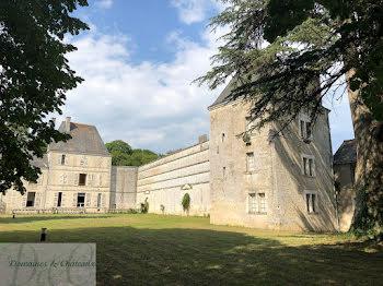 château à Paulmy (37)