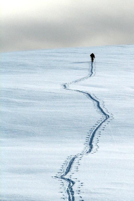 Errare alpinismum est... di knicks
