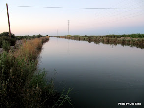 Photo: (Year 3) Day 37 - One of the Irrigation Canals