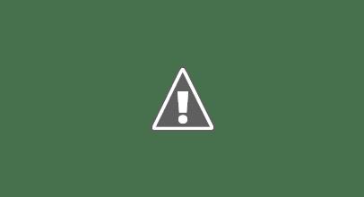 Photo: Sina, Enja, Bosco, Filis, Nanda & Jemba, Dezember 2010