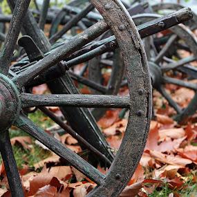 old wagon wheels by Alex Alex - Transportation Other ( old, wheels, wagon )