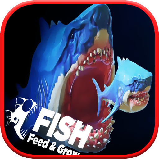 Feed and grow shark fish