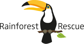 Image result for rainforest rescue