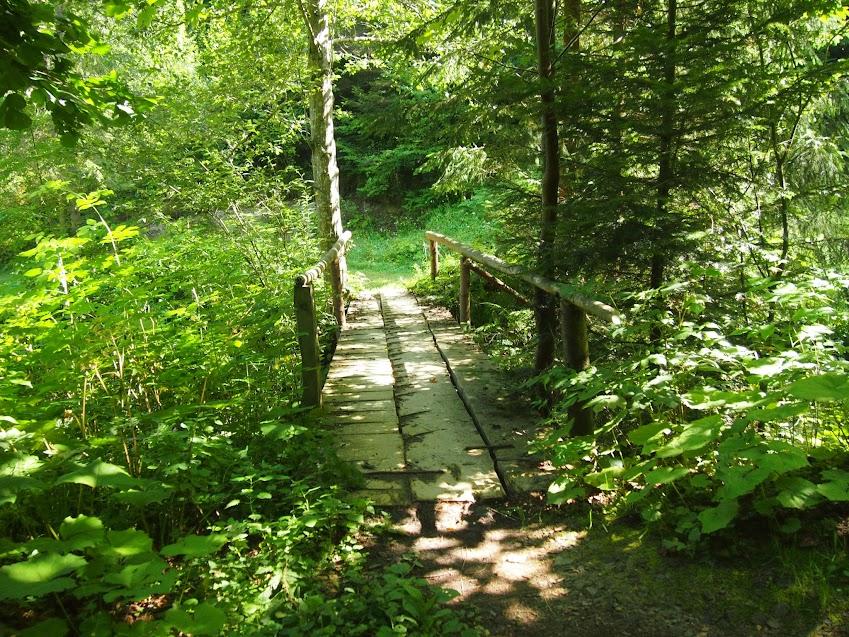 мостик в горах через ручей