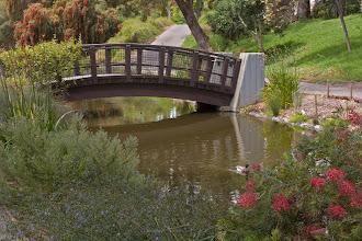 Photo: Arboretum - NE end