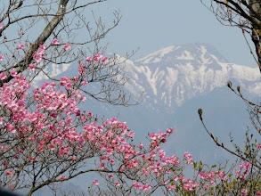 Photo: 白根山