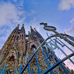 Sagrada Familia by Thilo Bayer - Buildings & Architecture Public & Historical
