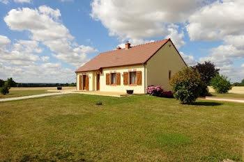 maison à Saint-Loup-de-Gonois (45)