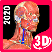 Anatomy Learning - 3D Atlas