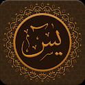 Surah Yasin Pro - 7 Qura Audio & Meanings icon