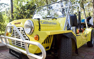 Mini Moke California Rent Aveiro