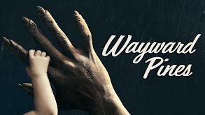 Wayward Pines thumbnail