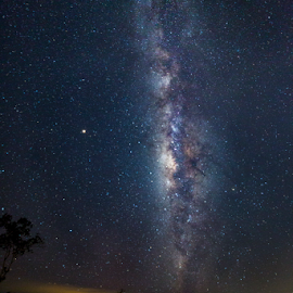 Milkyway Hunter Track by Lawrence Chung - Landscapes Starscapes ( sky, star, milkyway, night, dark sky )