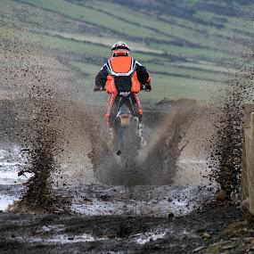 KTM  by Jazmyne Kelly - Sports & Fitness Motorsports ( 4stroke, ktm )