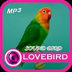 Download Suara Kucing Marah Latest version apk