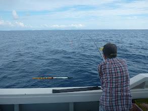 Photo: サメに喰われながらもどんどん釣れる!