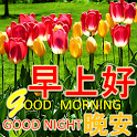 Chinese Good Morning Noon Good Night Love icon
