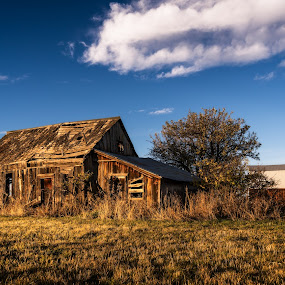 The Shack by Evan Jones - Buildings & Architecture Decaying & Abandoned ( warm, america, pioneer, glow, usa, rustic, weathered, farm, idaho, sky, light, grass, camas, hour, prairie, homestead, farming, rural, history, dawn, county, blue, cloud, sunrise, golden, abandoned )