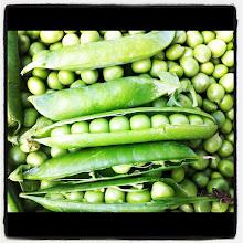 Photo: Some peas smiling :) #intercer #peas #romania #agriculture #rural - via Instagram, http://instagr.am/p/L4yy-wpfiY/