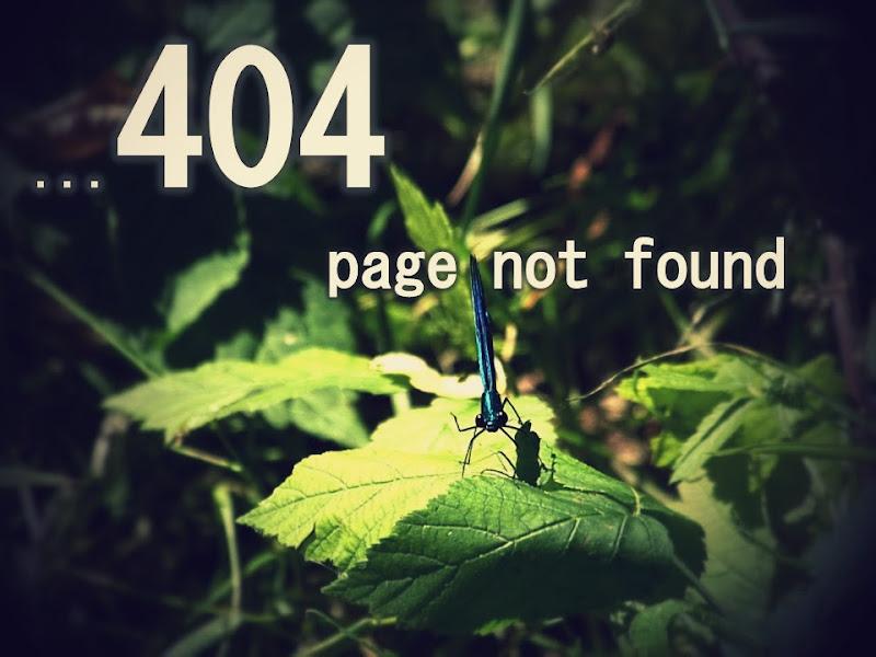 """""""Te lo dico io, pagina non trovata.."""" di Fabrizio Cappellini"""