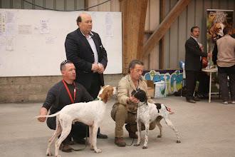 Photo: Les lauréats du jour : Éden de la Thèmeraie, CACS-CACIB Giotto des Buveurs d'Air, CACS-CACIB, Meilleur de race