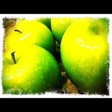 Photo: Granny Smith Apples #intercer - via Instagram, http://instagr.am/p/KMZlLwpfq7/